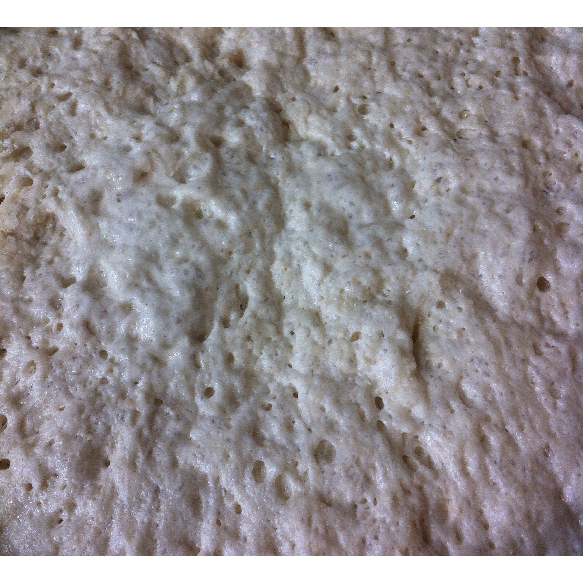 Forbidden Rice Blog | Pizza Dough