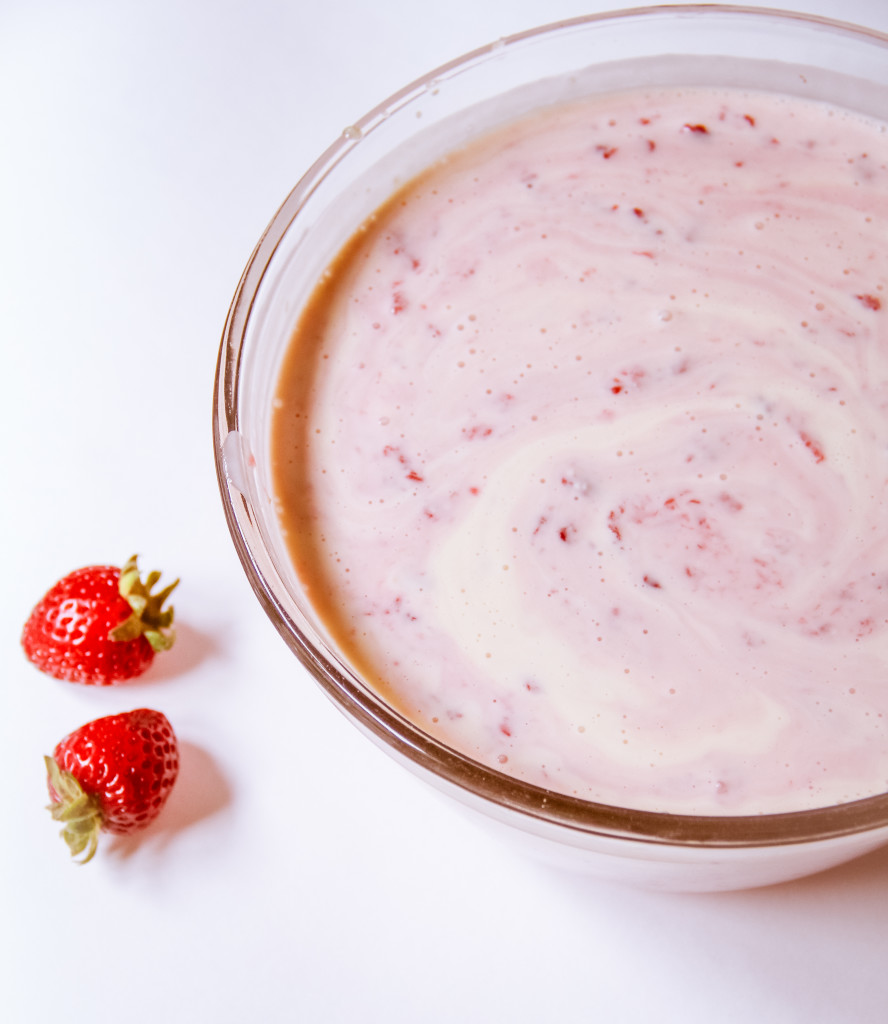 Forbidden Rice Blog | Fresh Strawberry Ice Cream (2 of 8)