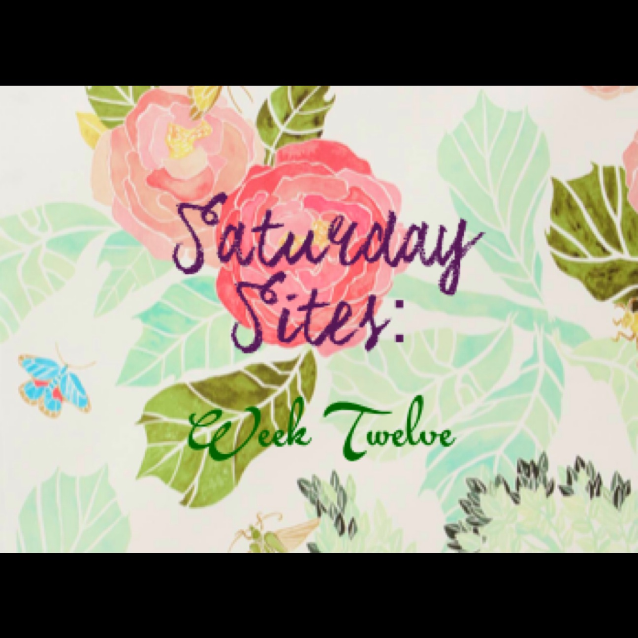 Saturday Sites - 12
